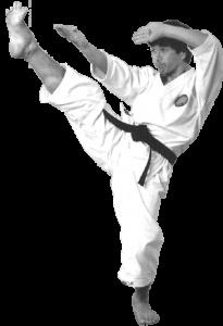 Kasuya Kick - Sensei Hitoshi Kasuya