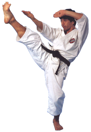 What is karate - High kick