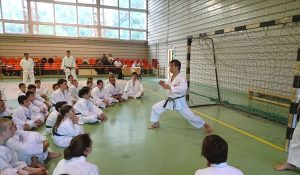 World Shotokan Karate-do Federation - kasuya teaching