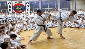 Starting karate training Kicking lesson