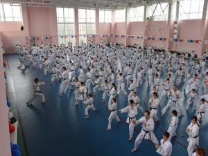 World Shotokan Karate-do Federation training