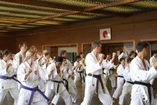 Crowded conditions at the 2007 WSKF international training seminar