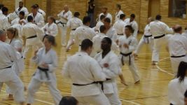 Action aplenty at the WSKF International Training Seminar Tokyo 2017