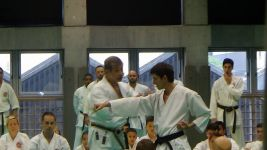 Kasuya Sensei Explaining techniques at the Nippon Budokan